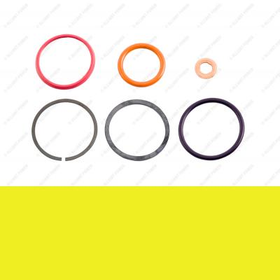 AP0001 - HEUI Injector Seal Kit