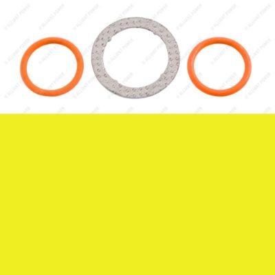 AP0005 - Exhaust Gas Recirculation Valve O-ring Kit