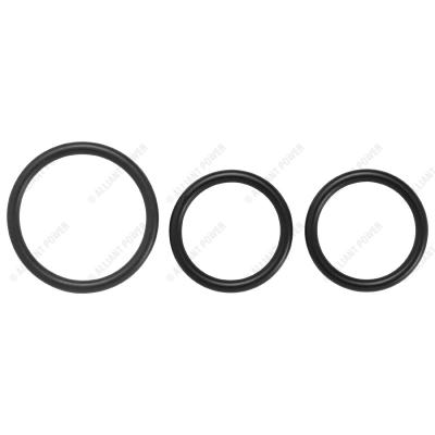 AP0057 - Exhaust Gas Recirculation Valve Seal Kit